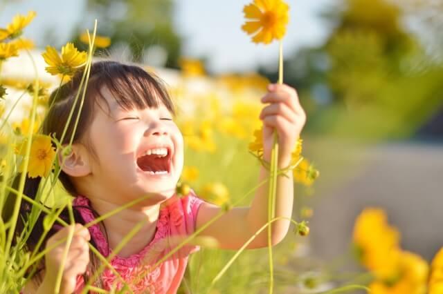 幸せ思考と成功法則